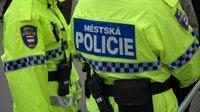 Strážníci za jeden den sesbírali z ulic Brna přes 330 stříkaček po narkomanech - anotační obrázek
