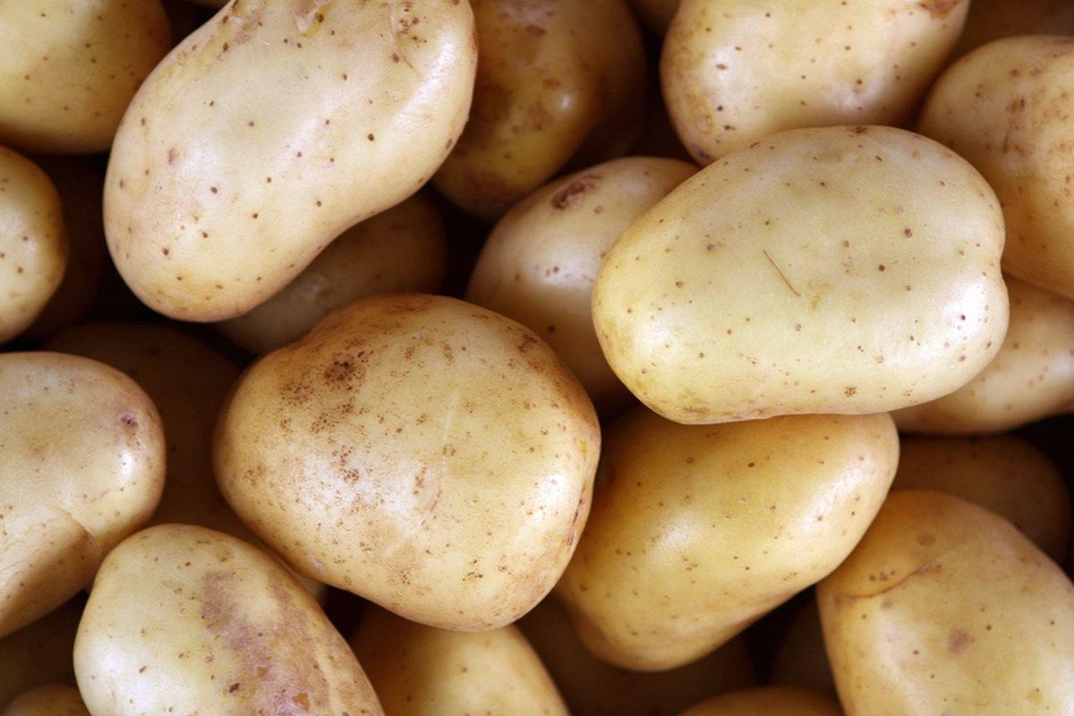 Zázračné brambory? Neuvěříte, jak velké využití mají - anotační obrázek