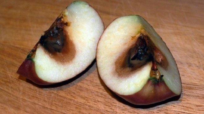 Nebezpečné potraviny: Našli tam i jed atropin. Nemáte je? - anotační foto