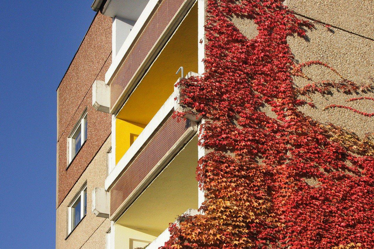 Pronájem nemovitostí: Jak si zajistit maximální výnos a eliminovat riziko neplatičů? - anotační obrázek