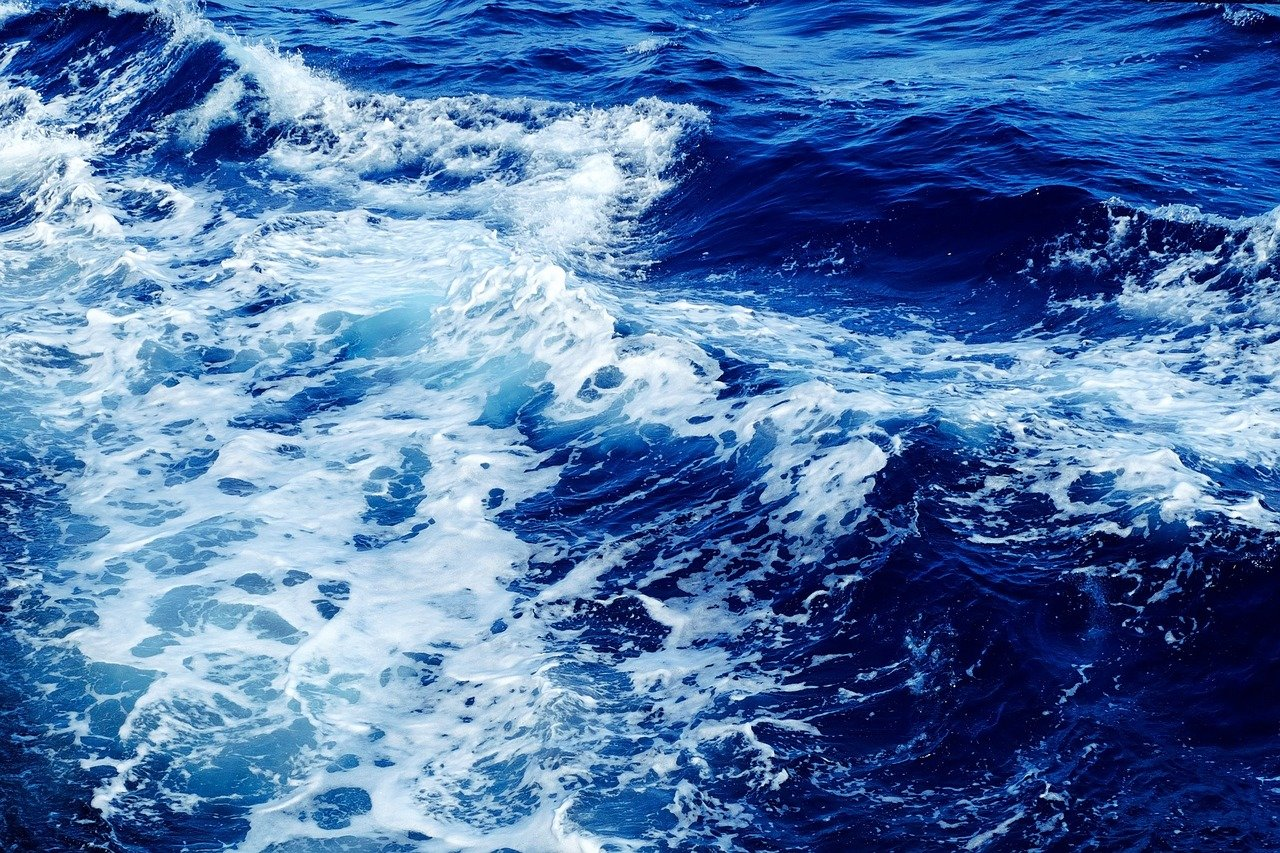 Vmořské soli a mořských plodech byly nalezeny mikroplasty - anotační obrázek