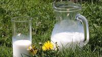 Máslo za 10 Kčs, litr mléka za 2 aneb Jak se proměnily včase ceny základních potravin včeských kuchyních? - anotační obrázek