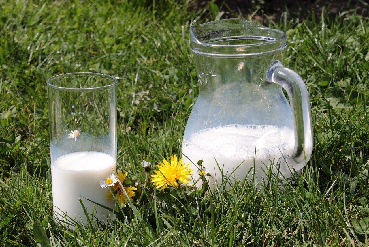 Mléko, ilustrační fotografie