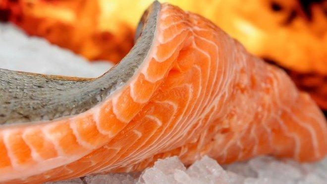 Ryby, ilustrační fotografie