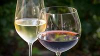 Víno, ilustrační fotografie