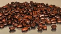 Káva, ilustrační fotografie