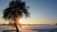 Zimní slunce