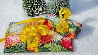 Vrácení a výměna nevhodných vánočních dárků? Opodmínkách rozhodují sami prodejci - anotační obrázek