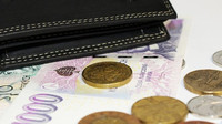 Platy v Evropě: Jsou Češi jen chudí příbuzní? - anotační obrázek