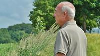 Příručka budoucího důchodce. Jak správně žádat o penzi? - anotační obrázek