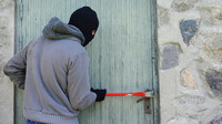 Zloděj v akci