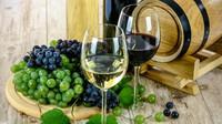 Svatomartinských vín bude letos méně - anotační obrázek