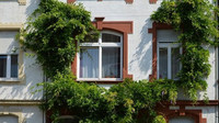 Izolace zhadrů versus chytré domácnosti. Jak se změnilo bydlení Čechů za 100 let? - anotační foto