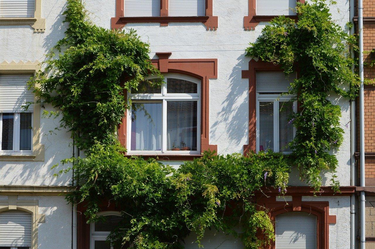 Izolace zhadrů versus chytré domácnosti. Jak se změnilo bydlení Čechů za 100 let? - anotační obrázek