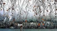 Předpověď počasí na noc a sobotu 9. prosince - anotační obrázek
