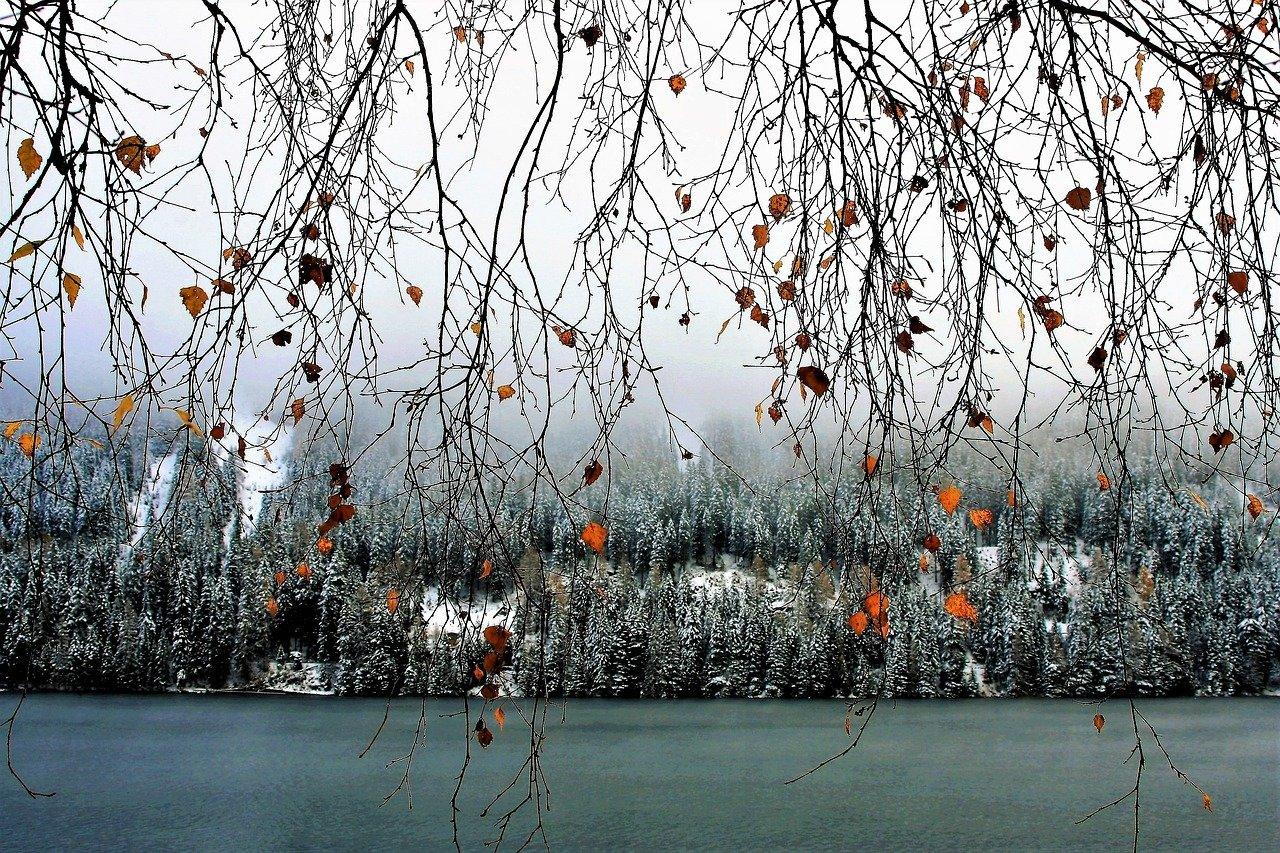 Předpověď počasí na noc a neděli 19. listopadu - anotační obrázek