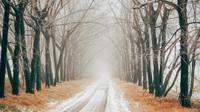 Řidiče potrápí mlhy. Předpověď počasí na noc a úterý 17. prosince - anotační foto