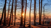 Předpověď počasí na noc a úterý 18. prosince - anotační obrázek