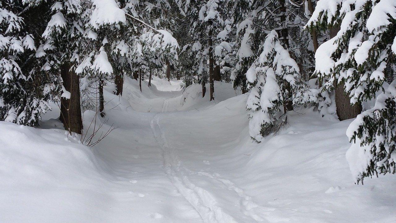 Předpověď počasí na noc a neděli 21. ledna - anotační obrázek