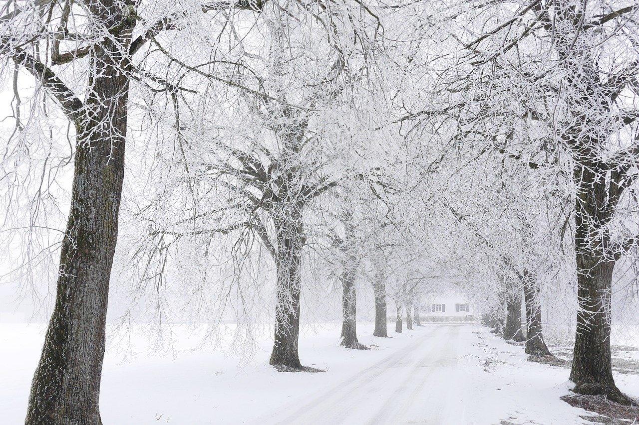 Předpověď počasí na noc a úterý 11. prosince - anotační obrázek