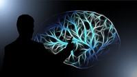 Co se s člověkem děje po smrti? Tajemná mozková aktivita zaskočila lékaře - anotační obrázek