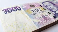 Příjmy klesly polovině domácností v Česku - anotační obrázek
