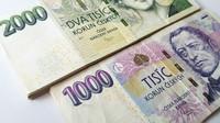 Bohatství českých domácností je historicky největší - anotační obrázek