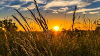 Varování meteorologů: V Česku je moc přízemního ozonu. Lidé mohou pociťovat zdravotní potíže - anotační obrázek