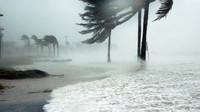 Řádění hurikánu Florence nepřežilo už 32 lidí. Nejmladší obětí je sedmiměsíční kojenec - anotační obrázek