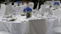 95 svateb a jeden pohřeb: Je správce daně oprávněn požadovat informace o hostině? - anotační obrázek