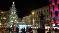 Vánoční stromy se letos v Brně rozsvítí. Zřejmě budou chybět stánky s jídlem a pitím - anotační obrázek
