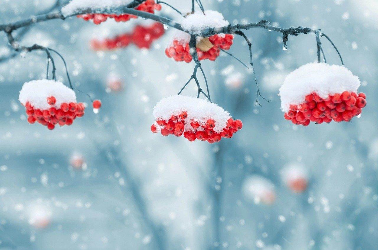 Předpověď počasí na noc a pondělí 17. prosince - anotační obrázek