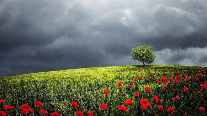 Krátké jaro, parné léto? Předpověď počasí ukazuje, kdy se prudce oteplí - anotační obrázek