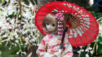 Japonské vesnice jsou vylidněné. Panenky nahrazují chybějící obyvatele - anotační obrázek