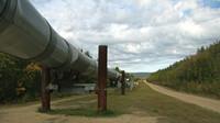 Ruská ropa byla znečištěna před měsícem, Rusko už zná viníky. Česko čerpá ze státních rezerv - anotační obrázek