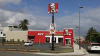 Maso bez masa? KFC hledá rostlinné alternativy kuřete - anotační obrázek