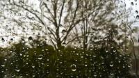 Čeká nás větrné a deštivé počasí. Předpověď na noc a pondělí 18. listopadu - anotační foto