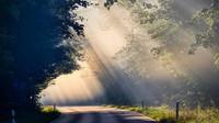 Ukáže se slunce? Předpověď počasí na noc a sobotu 19. října - anotační obrázek