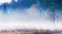 Mlhavé počasí s mrholením nepotěší. Předpověď na noc a úterý 22. října - anotační obrázek