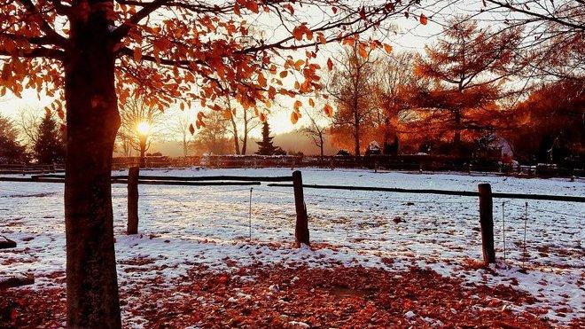Předpověď počasí na noc a pondělí 30. listopadu - anotační obrázek
