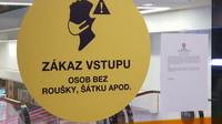 Koronavirus už tři čtvrtě roku omezuje život v České republice - anotační obrázek