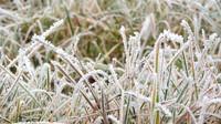 Česko čeká mrazivá středa. Předpověď počasí na 2. prosince - anotační foto