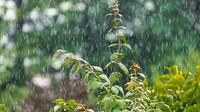 Předpověď počasí na noc a pátek 17. července - anotační foto