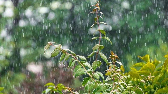 Předpověď počasí na noc a pátek 17. července - anotační obrázek