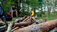 Pokuta až 100 tisíc. Jaká pravidla platí pro chování v lese? - anotační foto