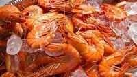 Veterináři varují před nebezpečnou bakterií v krevetách ze Sapy - anotační obrázek