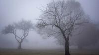 Předpověď počasí na noc a pátek 27. listopadu - anotační foto