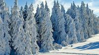 Předpověď počasí na noc a pátek 15. ledna - anotační obrázek