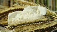 Světové ceny potravin v únoru devátý měsíc za sebou rostly - anotační obrázek