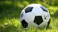 Od pondělka budou povoleny veškeré sportovní aktivity venku - anotační obrázek